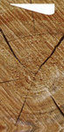 Duni Serviettentaschen Sacchetto 190x85 mm Motiv Wood 5x100 Stck